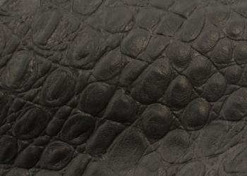 Kroko-schwarz