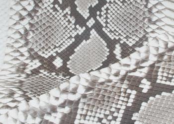 Python-natur